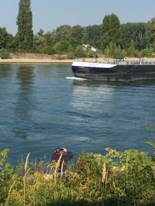 Schiffbeobachtung am Rhein